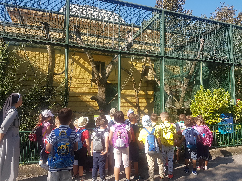 Izlet starije vrtićke skupine u ZOO vrt i park Maksimir