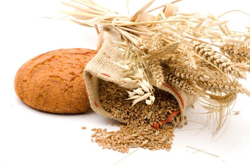 Zahvala za plodove zemlje i blagoslov kruha